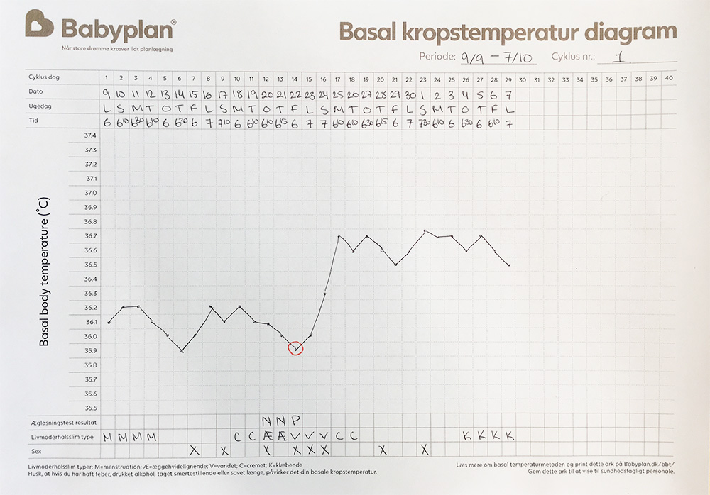 Se BBT diagram exempel här