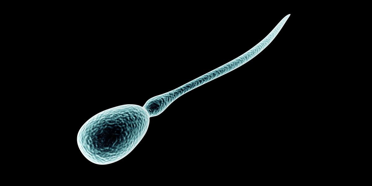 testa spermiekvalitet hemma